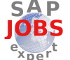 Permanent SAP Senior FICO Opportunity – UK